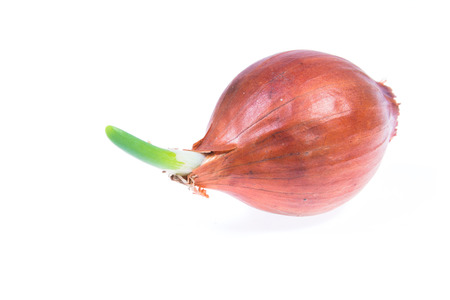 smack: Red onion isolated on white background Stock Photo