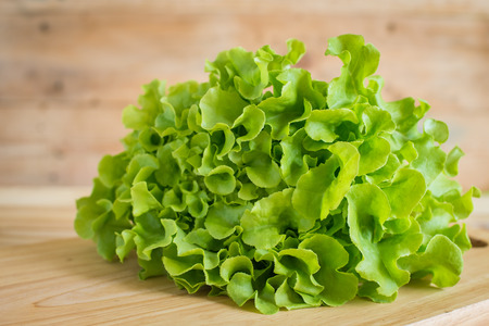 pesticide free: closeup fresh lettuces on wooden desk , pesticide residue free Stock Photo