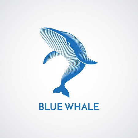 diving save: Blue whale detailed sign emblem isolated illustration