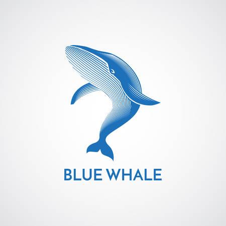 diving save: Blue whale detailed sign emblem isolated vector illustration Illustration