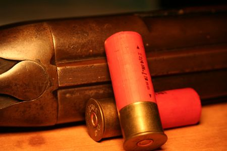 Shotgun & Shells Stock Photo - 406767