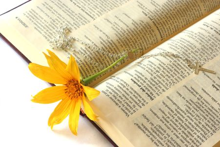 Flower and Bible 版權商用圖片