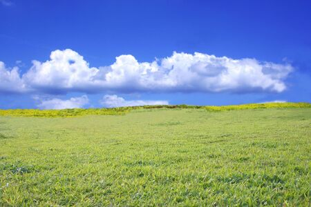 Green Field Stock Photo - 3068351
