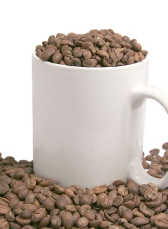 Beans of Coffee and Cup photo