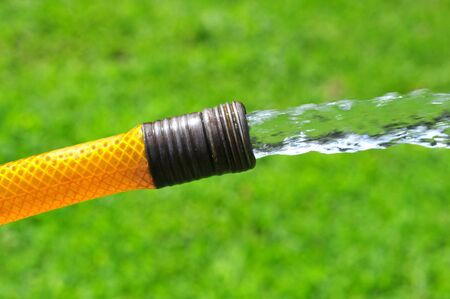 Water flowing from a garden hose over the green grass photo