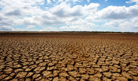 Barren desert land in national park Sarigua in Panama 版權商用圖片 - 8889171