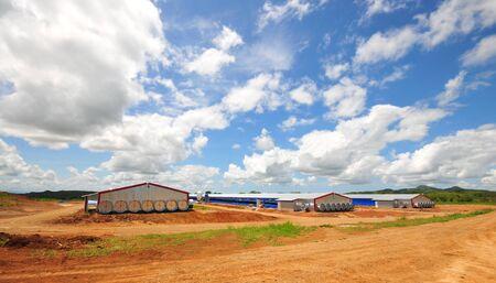 granja avicola: Casas modernas de aves de corral con sistemas de ventilación de túneles en la zona rural de Panamá