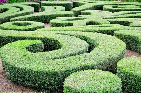 landscape architecture: Beautiful laberinth design in a house garden