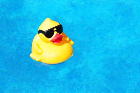 pato de hule: Pato de goma amarillo flotando en el interior de una piscina