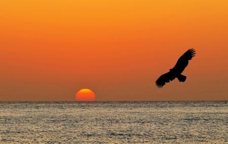 over the sea: Beautiful colorful sunrise at Corona Beach, Panama