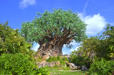 ANIMAL KINGDOM-DISNEY WORLD-FEB 5 2012  Feb 5 2012 big tree of life at disney animal kingdom  ORLANDO, FLORIDA