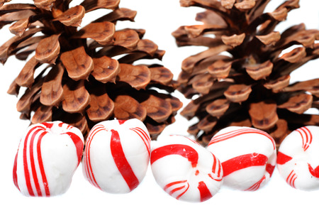 peppermint candy: Peppermint candy with pine cones during christmas on a white background Stock Photo