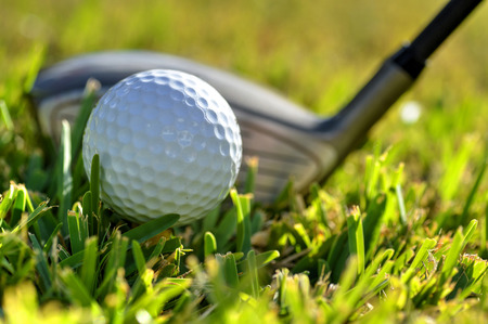 Close up shot of a golf ball and driver on green fairway grass
