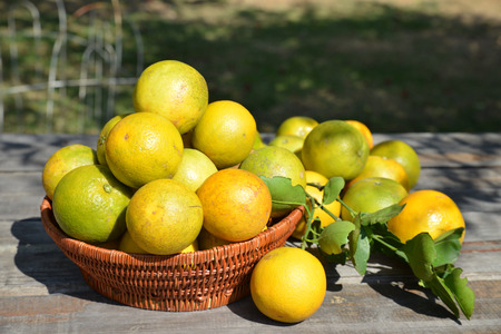 Group of fresh oranges just cut from the tree in a basket over a rustic wood table