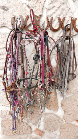 Horse Bridles  and Headstalls  hanging fronm a stone wall