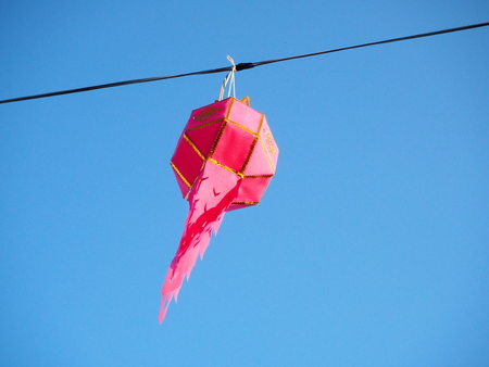 pink floating lanterns hang on sling wire