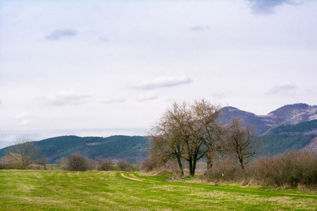 meanders: Beautiful forest, lawns and trees in the spring, Bulgaria Stock Photo