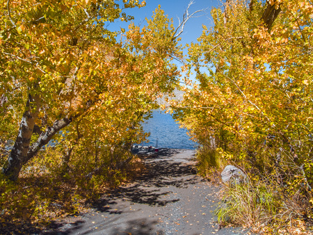 Narrow sandy path to a mountain lake surrounded by yellow trees in peak fall colors on a sunny day. Fishing equipment is seen on the shore with colorful blue water of Convict Lake in the background. Banque d'images