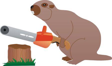 seguir adelante: roedores, vaya por delante �rboles para construir represas. Vectores