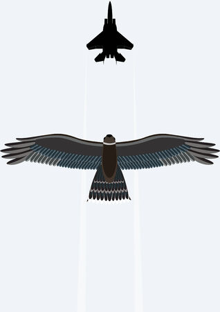 wingspan: The flying bird in the sky against a background of military aircraft