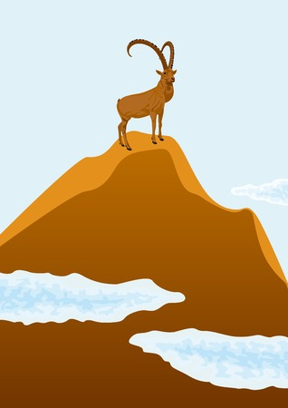 drifting: Mountain goat standing on top of a mountain, beneath drifting clouds. Illustration