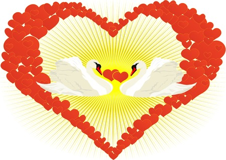 Two white swans in an abstract heart of hearts Vector