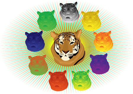 ussuri: Tigers head surrounded by colorful counterparts
