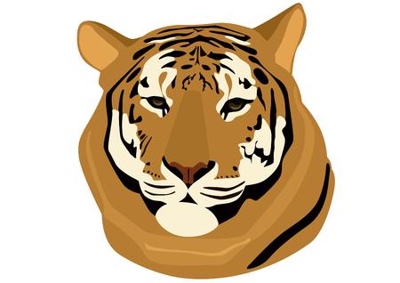 ussuri: Predatory animal entered in the