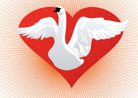 White Swan with my wings on the background of the heart Vector