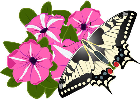 On a bouquet of flowers sitting two butterflies Stock Vector - 9102608