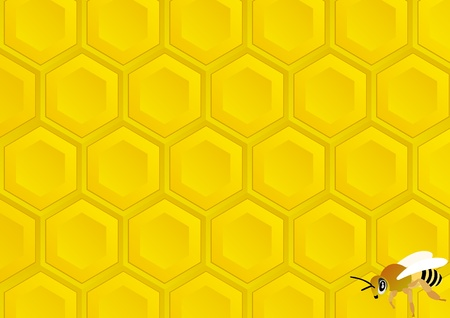Bee on honeycomb background with honey Vector
