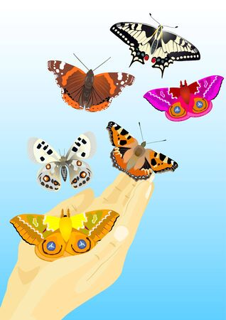 Multicolored butterflies flying out of human hands Vector