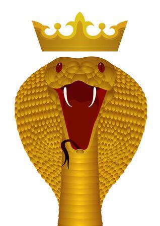 king cobra: Gold poisonous snake. The illustration on white background. Illustration