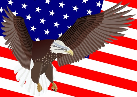wingspan: Flying eagle on a background the Stars and Stripes USA. Illustration