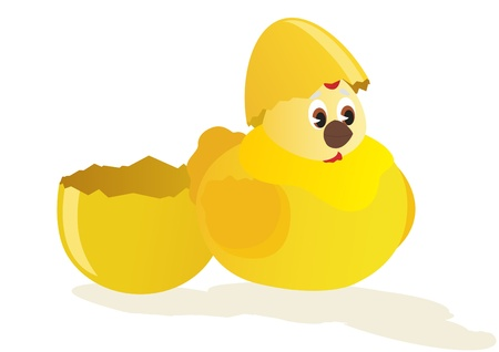 hatched: A broken shell eggs and hatched chick. The illustration on white background.