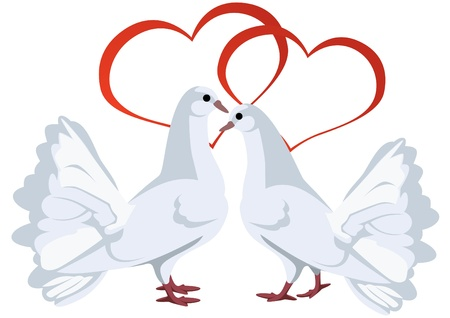 lax: Two hearts and two white doves. The illustration on white background.