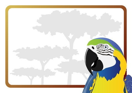 Body Part parrot on the background of trees. The illustration on white background. Vector