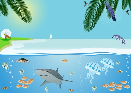 Summer coastal landscape and the inhabitants of the underwater world Vector