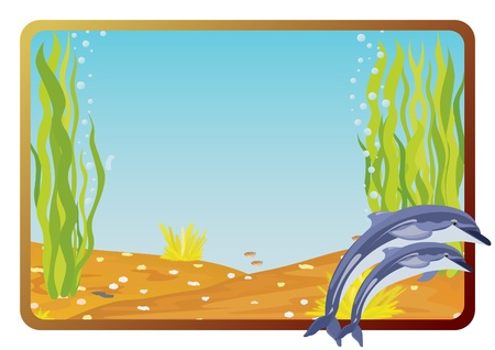 underwater fishes: Marine life on background frame with the underwater scenery. Illustration