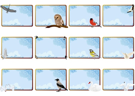 Birds on the background of the framework of the sky with clouds photo