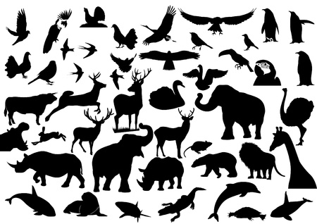 Contour images of fauna on the planet Earth Vector
