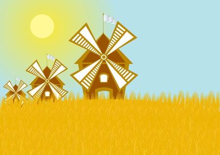 Windmills in the grain field. Wheat crop Vector