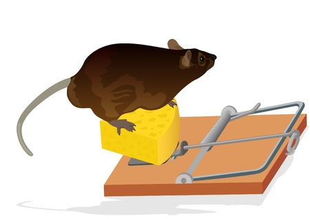 The rat sits on the cheese. Mousetrap for the destruction of rodents. Vector