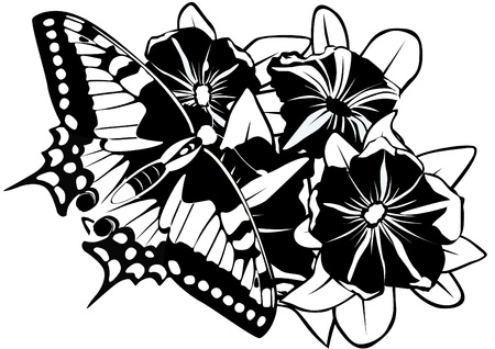 Butterfly on flowers. Black and white illustration. Vector