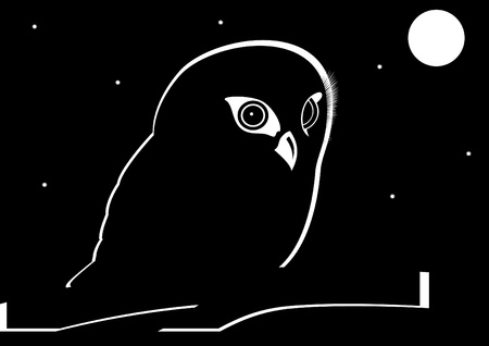 The contour of an owl on a branch in the night sky. The illustration on a black background. Stock Vector - 11819705