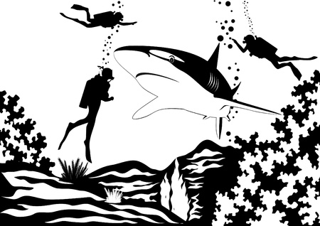 black and white line drawing: Predatory fish of the seas and oceans. Scuba divers swim near sharks. Black and white illustration. Illustration