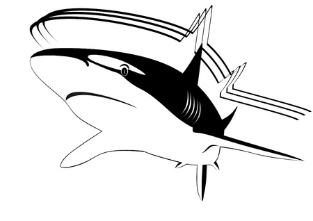 the occupant: Predatory fish of the seas and oceans. Black and white illustration.