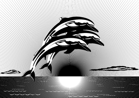 sky dive: Three dolphins against the setting sun. Black and white illustration.