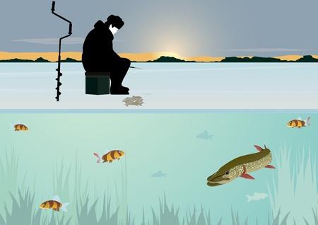 ice fishing: El sol en el horizonte de las masas forestales sobre el estanque cubierto de nieve. Un hombre coge una ca�a de pescar peces en invierno en el agujero. Nadar bajo el pez de hielo.