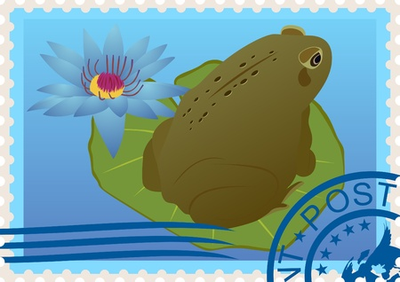 Postage stamp with a picture of a frog sitting on a sheet of water lilies and the postal stamp. Vector